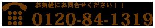 0120-84-1319